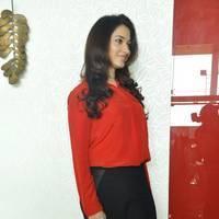 Tamanna Latest Photos at Thadaka Movie Press Meet   Picture 452289