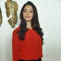 Tamanna Latest Photos at Thadaka Movie Press Meet   Picture 451968