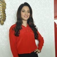 Tamanna Latest Photos at Thadaka Movie Press Meet   Picture 451969