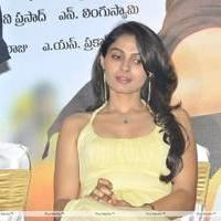 Andrea Jeremiah - Thadaka Movie Press Meet Stills
