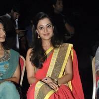 Nisha Agarwal Saree Photos at DK Bose Audio Release | Picture 453254