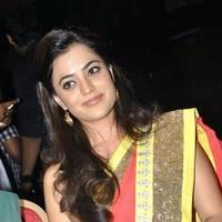 Nisha Agarwal Saree Photos at DK Bose Audio Release | Picture 453258