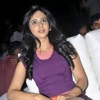 Rakul Preet Singh Hot Images at DK Bose Audio Release | Picture 453180