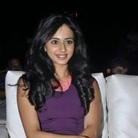 Rakul Preet Singh Hot Images at DK Bose Audio Release | Picture 453187