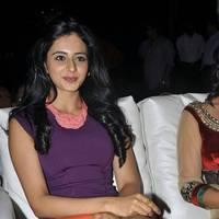 Rakul Preet Singh Hot Images at DK Bose Audio Release | Picture 453188
