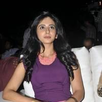 Rakul Preet Singh Hot Images at DK Bose Audio Release | Picture 453189