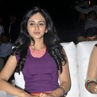 Rakul Preet Singh Hot Images at DK Bose Audio Release | Picture 453202