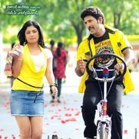 Ramachari Telugu Movie Wallpapers | Picture 453677