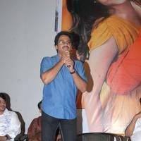 Ashok. G - Sukumarudu Movie Triple Platinum Disc Function Pictures