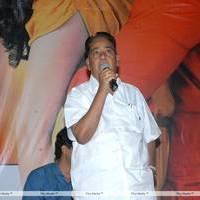 K. V. V. Satyanarayana - Sukumarudu Movie Triple Platinum Disc Function Pictures