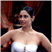 Divya Parameshwaran - Rajakota Rahasyam Movie Stills