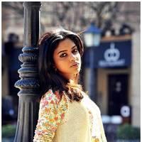 Amala Paul - Iddarammayilatho Movie Latest Photos